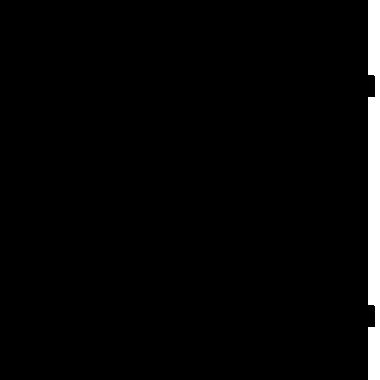 Busch Gardens Icon